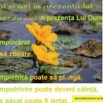 Meditatia zilei (18.12.2011)Doresti eliberare,iertare,mangaiere si rezolvare?