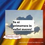 THE MESSENGERS – Romania,tara mea-videoclip