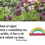 "Luiza Spiridon & Vili Dula – The Prayer -""Dincolo de cuvinte"""